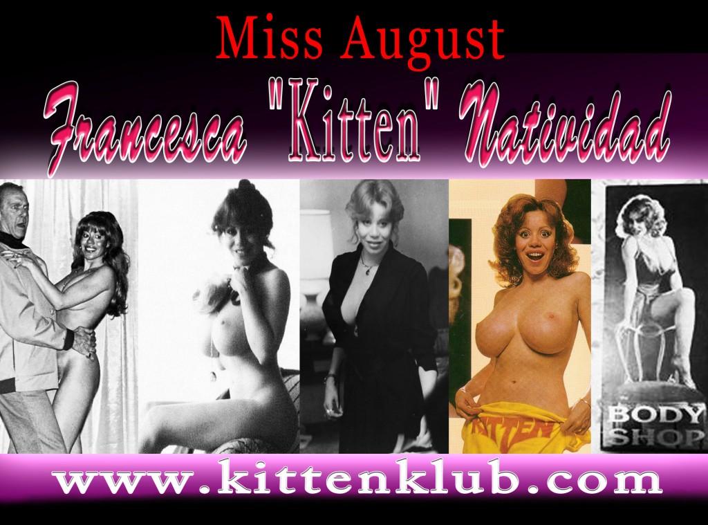 Kitten Banner copy