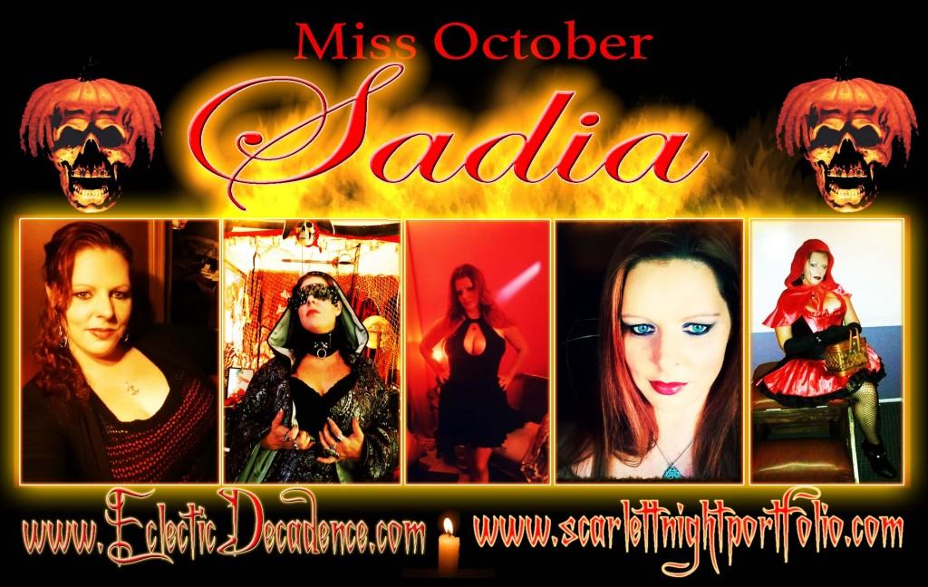 Sadia Banner.
